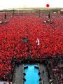 Yüzbinler, Albayrak'larıyla Demokrasi ve Şehitler Mitingi için Yenikapı'da Buluştu
