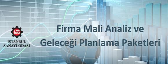 Firma Analiz ve Geleceği Planlama Paketleri